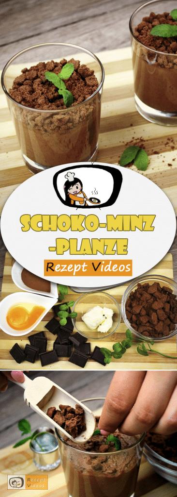 Schoko-Minz-Pflanze, Desserts, Nachspeisen, Schokolade Rezepte, Kuchen, Rezept Videos, einfache Rezepte, Kuchenrezepte, leckere Rezepte