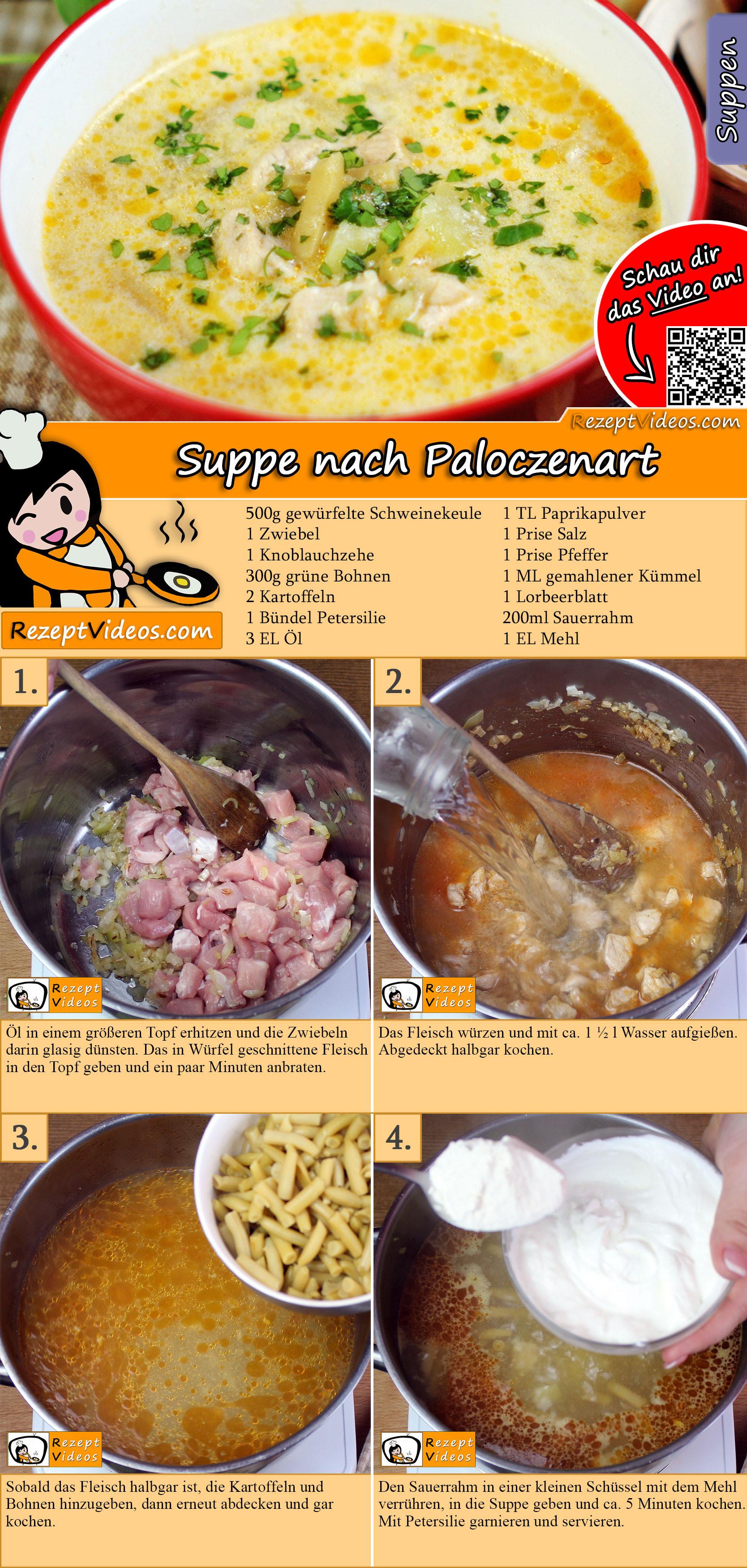 Suppe nach Paloczenart Rezept mit Video